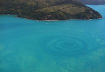 A natural ocean swirl taken from a seaplane near Whitehaven Australia  photo by Vincent Archer