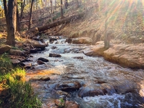 A nice creek in Washington Park near Payson AZ