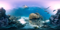 A  panorama of the coral reef near Heron Island Queensland Australia along the Great Barrier Reef