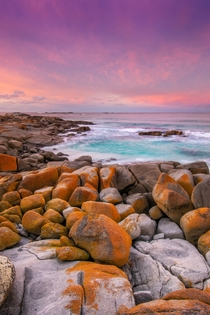 A pastel sunset over the Bay Of Fires in East Coast Tasmania x OC