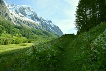 A path through the meadows of the Val Ferret Italy