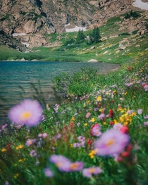 A peaceful day by an alpine lake in the Indian Peaks Wilderness - Colorado IG ImagesByDJ