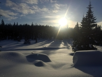 A peaceful morning out on cross country skis- Lillehammer Norway