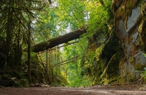 A Peaceful Trail Hope BC Canada