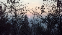 A photo I took  years ago near Garden Valley Idaho while I was working as a wildland firefighter If I can remember correctly the fire was called The Springs Fire and it was burning in Boise National Forest The smoke from the wild fires were so thick that