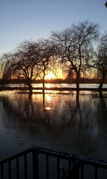 A picture I took on the outskirts of my hometown of Gloucester England after the River Severn had flooded in January Looks quite tropical