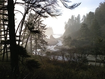 A picture of a foggy Ruby Beach Washington taken ages ago a recent post reminded me of  x