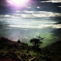 A picture take from the entry point to the Ngoronggoro crater in Tanzania Take from an iPhone