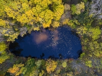 A pond surrounded by trees in Skaneateles New York  Photographed by Matt Champlin