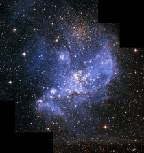A population of infant stars embedded in the nebula NGC