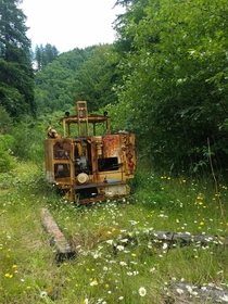 A rail tamper deep in the Oregon forest on the POTB line that hasnt been touched in  years