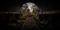 A railway becomes consumed by ferns in this tunnel in Australia