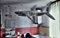 A random tin foil shark in an Abandoned Hunters Home Oo  video link discription