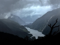 A rare shot taken between the clouds of rain and black flies at Doubtful Sound New Zealand