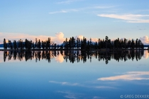 A reflected treeline on a very flooded Pelican Creek in Yellowstone National Park