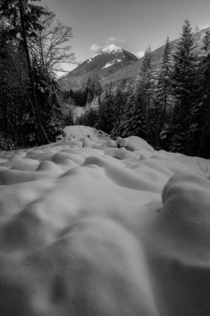 A river of snow Cascade Mountains Washington