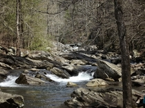 A river tumbles over striking rocks in the mountains of North Georgia near Ellijay Photograph by C McGinty-Carroll