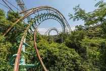 A rollercoaster being swallowed up by the forest in this abandoned Japanese theme park
