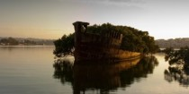 A rotten and overgrown ship - Homebush Bay Australia