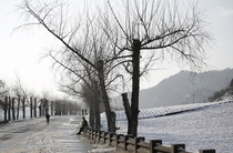 A rural road along the snow covered farm fields in Hyangsan county North Pyongan North Korea  Photo by Wong Maye-E