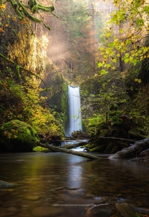 A scene straight out of a fairytale Wiesendanger Falls Columbia River Gorge Oregon