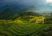 A school near a terraced rice field in Vietnam  photo by sarawut Intarob