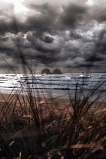 A sea monster in the storm on the Oregon coast x