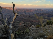A seldom seen view of the Grand Canyon Twin Point Overlook Close to  miles round trip of dirt road to get this view