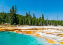 A September day at Yellowstone National Park OC x