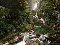 A series of small waterfalls enclosed by a lush jungle - Routeburn Track New Zealand