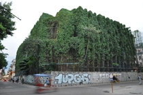 A shell of a building in Havana being consumed by ivy