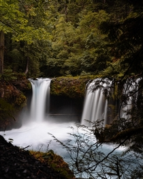A short and sketchy hike down to this stunning waterfall in Oregon Spirit Falls