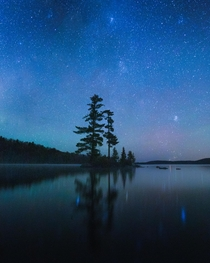 A single exposure shot in the Algonquin Park interior at night  IG mikemarkov