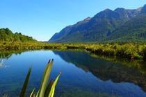 A slight breeze disturbed a near perfect reflection - Mirror Lakes Fjordland New Zealand