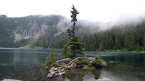 A small enchanted island in Mowich Lake near Mt Rainier National Park WA State USA