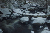 A small frozen creek in Natchaug State Forest CT