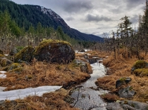 A small stream in Juneau AK Feels like spring has sprung