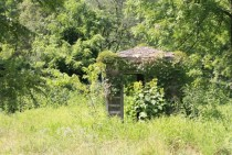 A small unknown abandoned building in the middle of a forest in Southern Illinois