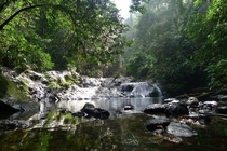 A small waterfall tucked away in the rainforest of borneo Maylasia OC resolution