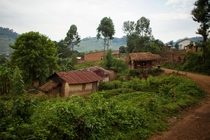 A small Western Ugandan village near Bwindi Impenetrable Forest