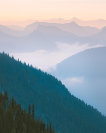 A smoky summer morning last July Almost slept through my alarm for this one glad that wasnt the case Mount Rainier National Park WA