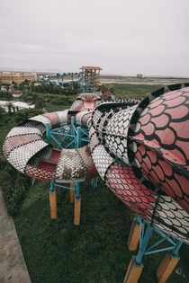 A Snake Slide in an Abandoned Water Park