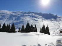 A snowy winter morning in Lebanon