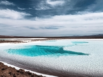 A sparkling pool of turquoise water found in the middle of a salt flat deep in the deserts of northern Chile Surreal