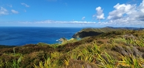 A spectacular view at Cape Reinga New Zealand