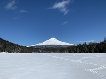 A spectacularly clear late winter day gave me this great view of Mount Hood from Trillium Lake in Oregon