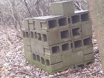 A stack of cinder blocks I saw while wandering in the forest Im not sure why this would be here there is nothing else around it