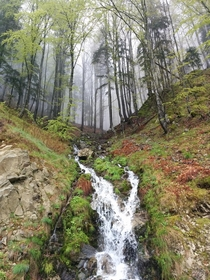 A stream in Rhodope Mountains Bulgaria - Spring is here  by Evgeni Kolev