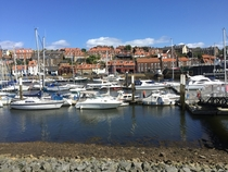 A sunny day at Whitby Harbour