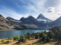 A sunny September afternoon looking up at Mt Assiniboine from the shore of Lake Magog British Columbia Canada   x